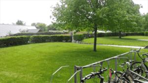 Cykelparkering Hørsholm Tandlæge, Rungstedtand ved Vedbæk, Tandlægeklinik